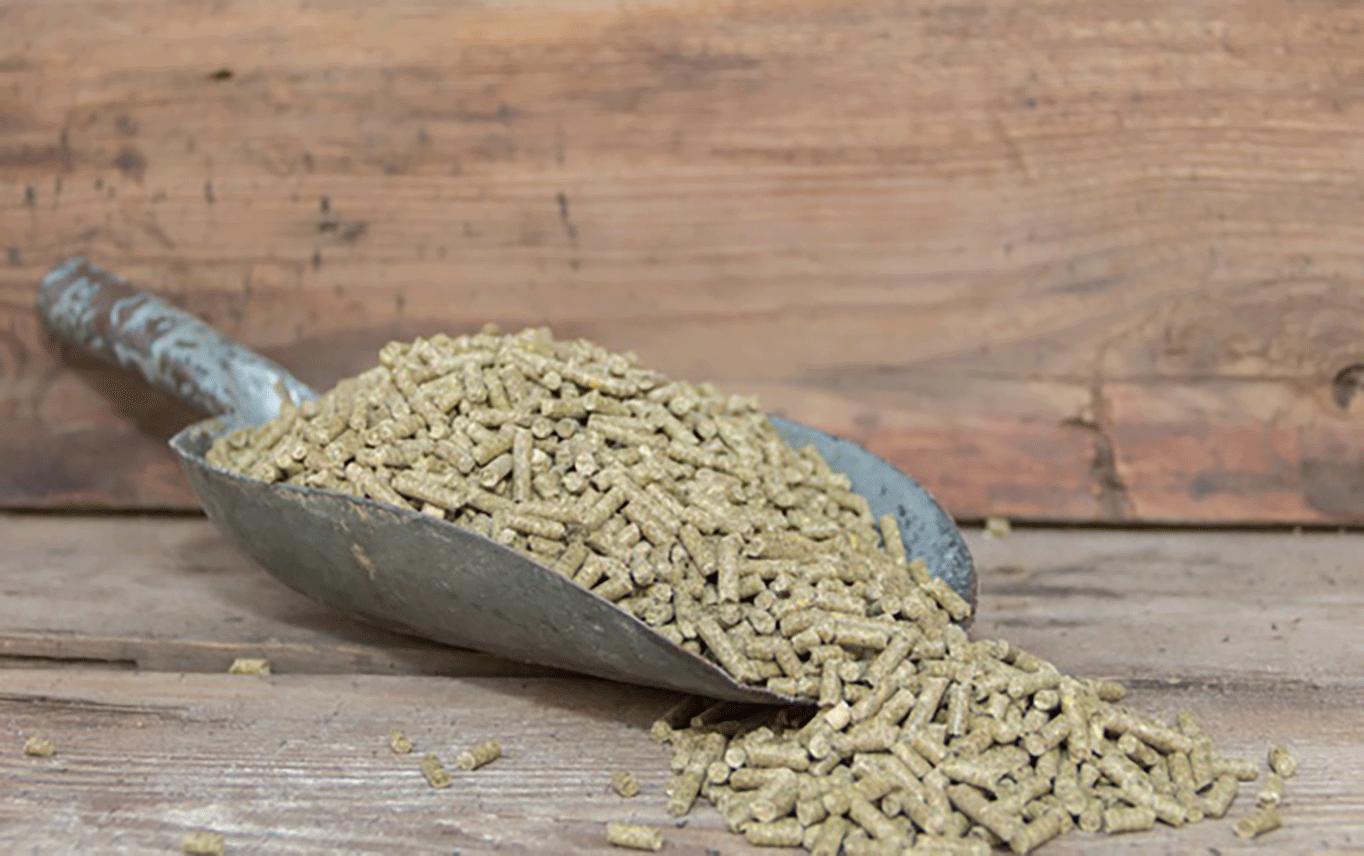 cuillere-granules-pour-lapins-vendre-dans-fourrage_12395-1124