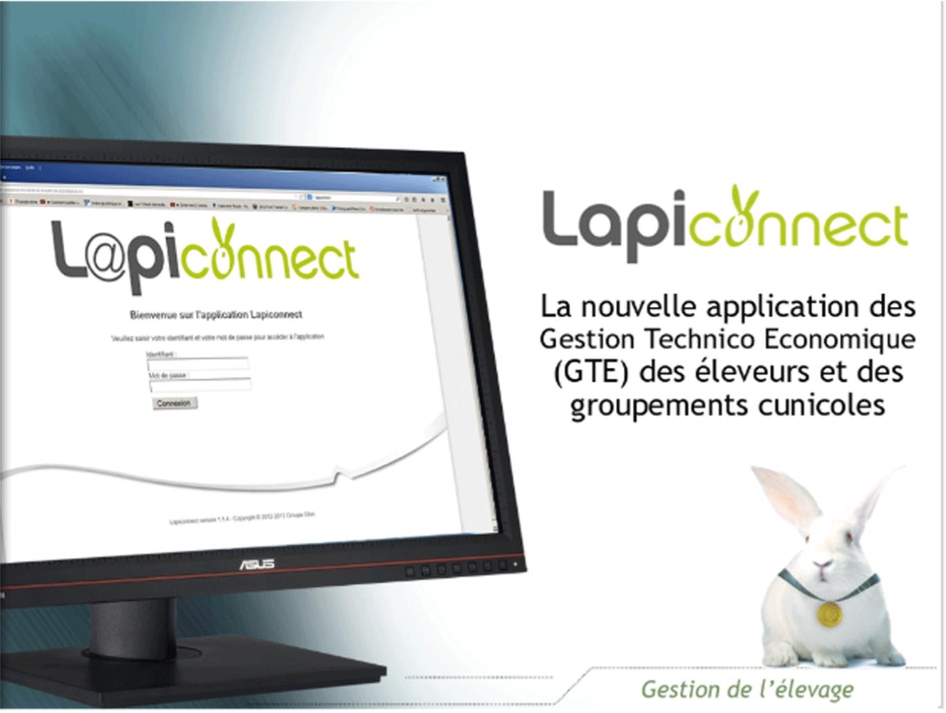 Lapiconnect