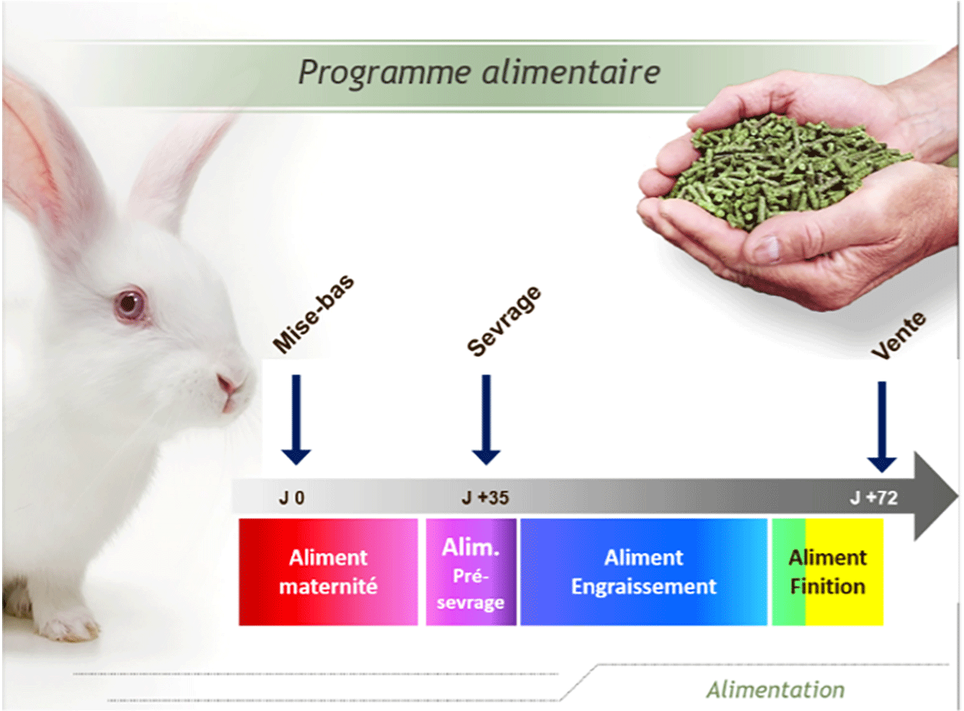Programme-alimentaire